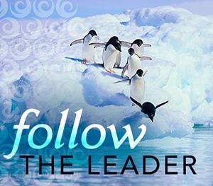 Follow-the-leader-4-6
